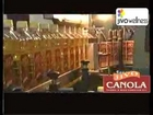 Jivo Canola Oil Bottling Plant - the 1st Canola Oil Filling Plant in India
